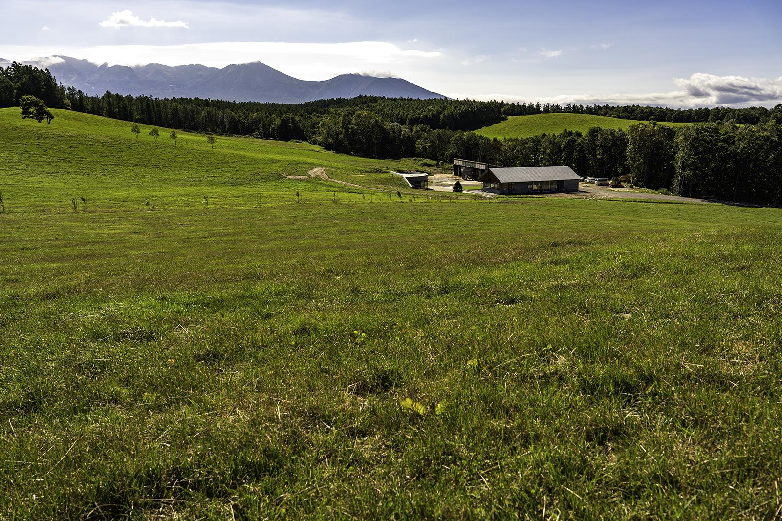 丘のまち美瑛 牧場