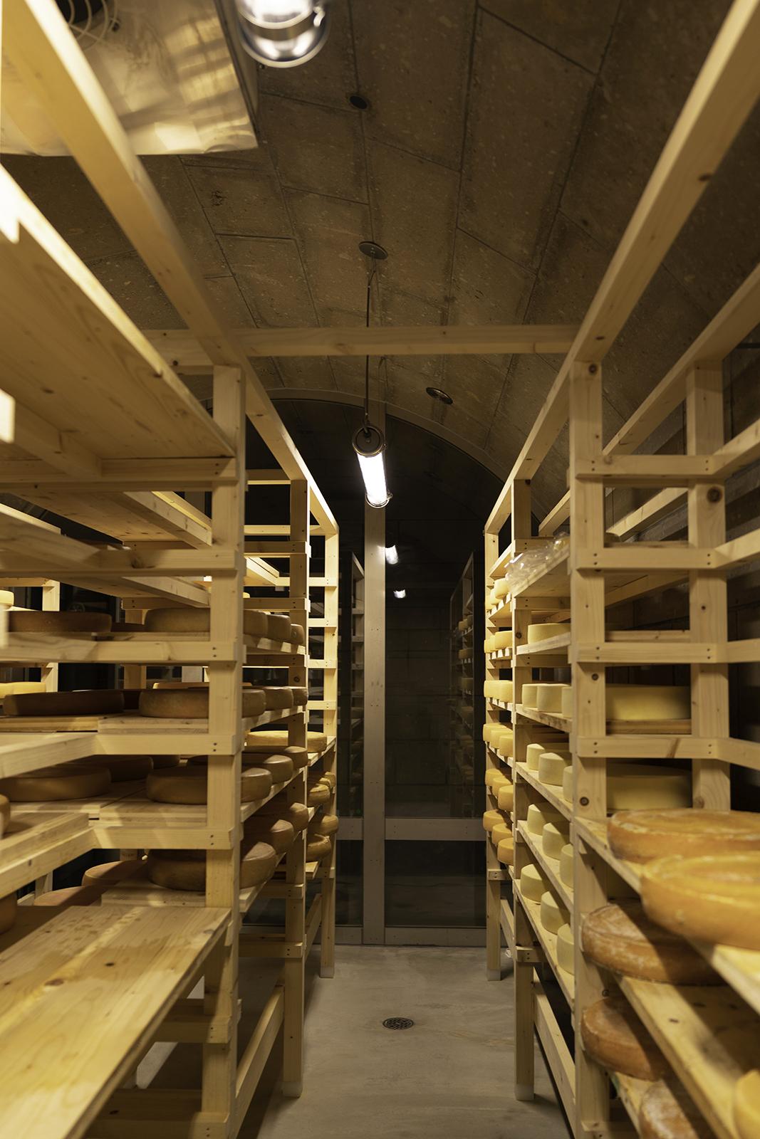 チーズ 熟成庫 美瑛軟石